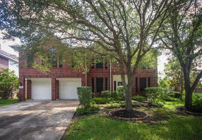 Sugar Land Single Family Home For Sale: 739 Annies Way