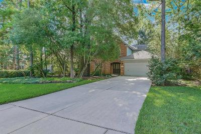 The Woodlands Single Family Home For Sale: 95 N Winterport Circle