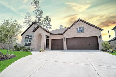 Spring Single Family Home For Sale: 32001 Birch Briar Court