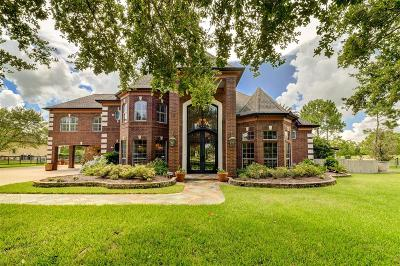 Pearland Single Family Home For Sale: 3503 Buckholt Street