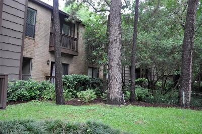 Houston Condo/Townhouse For Sale: 11711 Memorial Drive #274