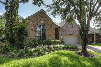 Pearland Single Family Home For Sale: 1610 S Lago Vista Drive