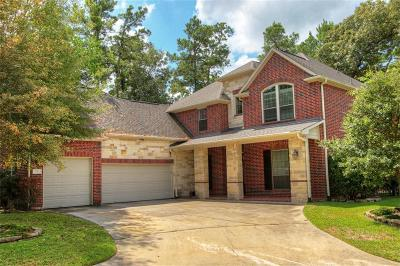 The Woodlands Single Family Home For Sale: 3 Dunwood Springs Court
