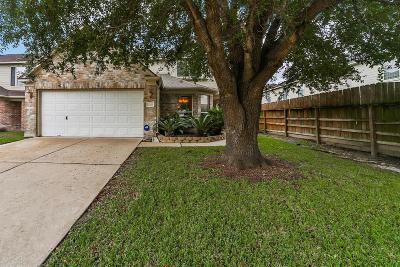Channelview Single Family Home For Sale: 15310 Harvest Fall Lane