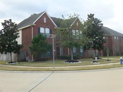 Sugar Land Single Family Home For Sale: 14707 Thomas Mill Ln Lane