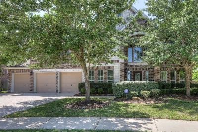 Pearland Single Family Home For Sale: 2960 Auburn Woods Drive