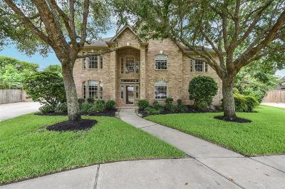 Friendswood Single Family Home For Sale: 2880 Everett Drive