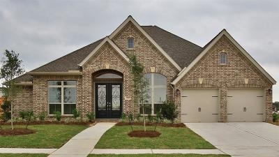 Tomball Single Family Home For Sale: 21430 Chestnut Rose Road