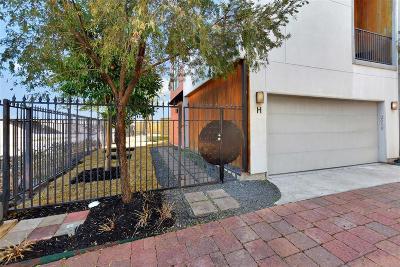 Houston Single Family Home For Sale: 2010 Blodgett Street #H