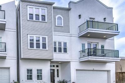 Houston Single Family Home For Sale: 955 24th Street #E