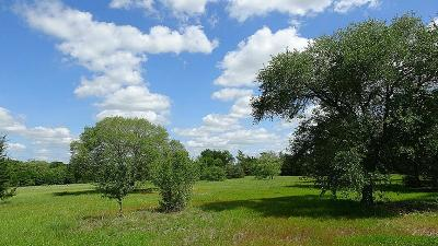 Fayette County Farm & Ranch For Sale: 925 N Nassau