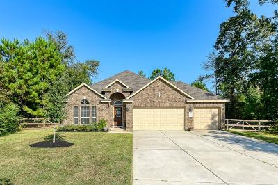 Conroe Single Family Home For Sale: 9186 Silver Back Trail
