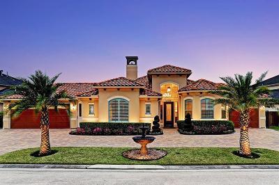 Houston Single Family Home For Sale: 2318 Thicket Ridge Lane