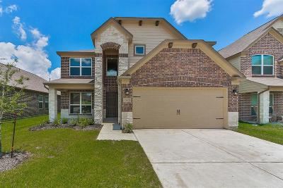 Houston Single Family Home For Sale: 15423 Meandering Post Trail