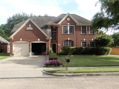 Sugar Land Single Family Home For Sale: 15223 Oak Lake Glen Drive
