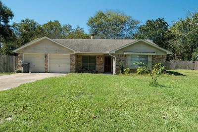 New Caney Single Family Home For Sale: 20706 Baptist Encampment Road