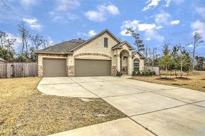 Tomball Single Family Home For Sale: 12510 Sherborne Castle Court