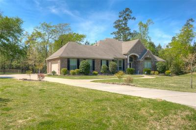 Single Family Home For Sale: 26211 Misty Manor Lane