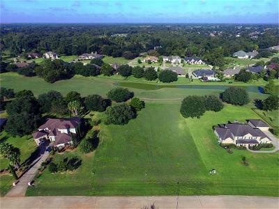 Fulshear Residential Lots & Land For Sale: 3923 Wentworth Drive