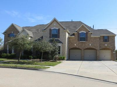 Pearland Rental For Rent: 11702 Crescent Cove Drive