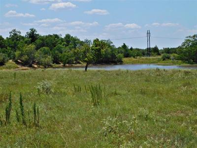 Austin County Farm & Ranch For Sale: Sens Road
