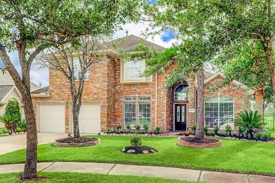 Houston Single Family Home For Sale: 10006 Red Mesa Drive