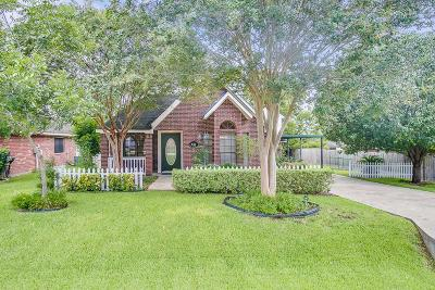 Montgomery Single Family Home For Sale: 347 Leisure Lane