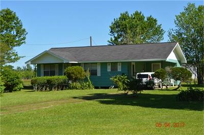 Liberty Single Family Home For Sale: 575 County Road 184