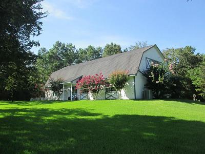 Magnolia Single Family Home For Sale: 24525 Chipwood Drive