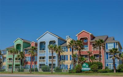 Galveston Condo/Townhouse For Sale: 7000 Seawall Boulevard #233