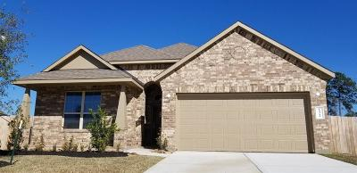 Conroe Single Family Home For Sale: 14313 Congaree Court