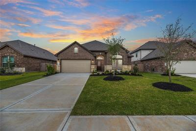 Katy Single Family Home For Sale: 28714 Forest Pass