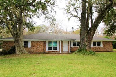 Sweeny Single Family Home For Sale: 1361 County Road 934