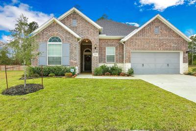 Single Family Home For Sale: 375 Westlake Terrace Drive