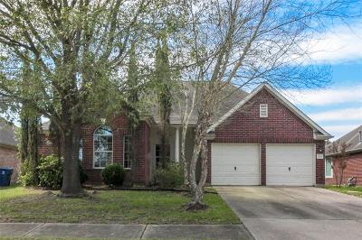 Houston Single Family Home For Sale: 1819 Laura Anne Drive