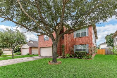 Missouri City Single Family Home For Sale: 1227 Americana Drive