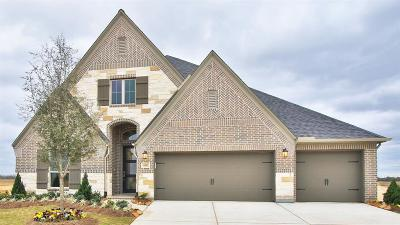 Katy Single Family Home For Sale: 6942 Amberwing Way
