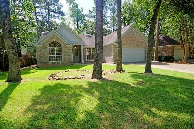Single Family Home For Sale: 6 W Stony Bridge Court