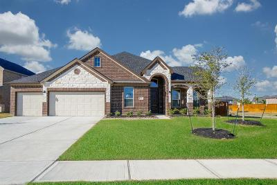 Katy Single Family Home For Sale: 27902 Pinpoint Crossing Drive