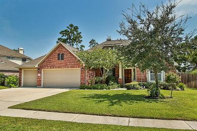 Conroe Single Family Home For Sale: 31906 Wildwood Park Lane