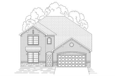 Conroe Single Family Home For Sale: 10058 Black Maple Drive