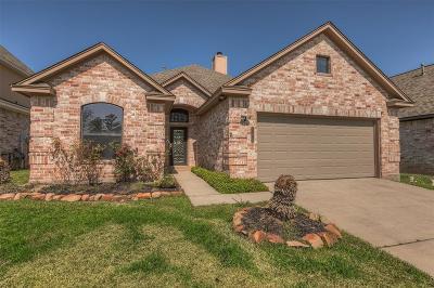 Willis Single Family Home For Sale: 13419 E Summerchase Circle