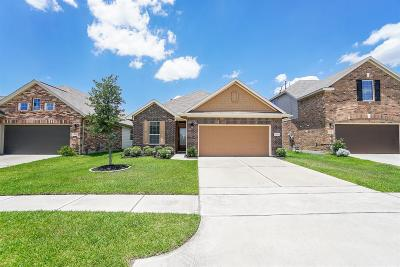 Katy Single Family Home For Sale: 20754 Winghaven Drive