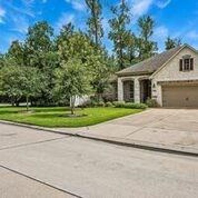 Porter Single Family Home For Sale: 19936 Driver Forest Drive