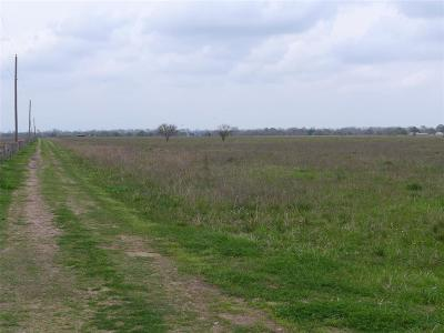 Fort Bend County Country Home/Acreage For Sale: 8826 Johnson Road