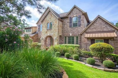 The Woodlands Single Family Home For Sale: 23 Clare Point Drive