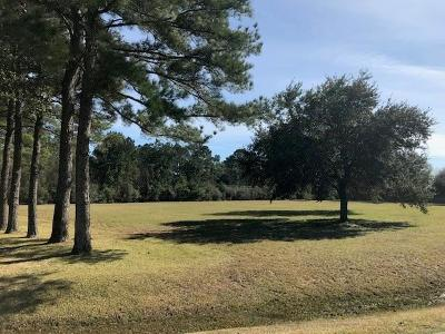 Tomball Residential Lots & Land For Sale: 00 Holly Creek Trail