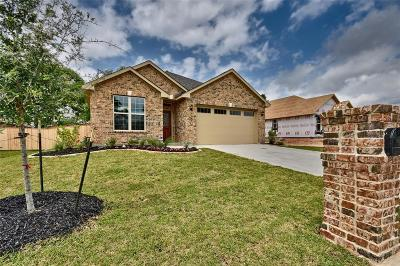 Bellville Single Family Home For Sale: 42 Briarwood Ln
