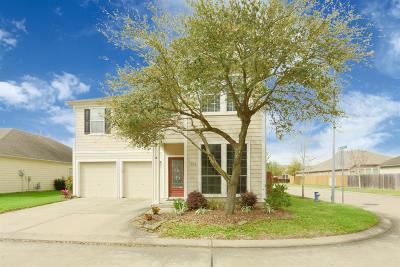 Houston Single Family Home For Sale: 6102 Stilson Branch Lane