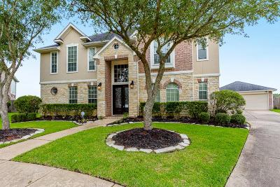 Sugar Land Single Family Home For Sale: 5907 Briar Hill Court